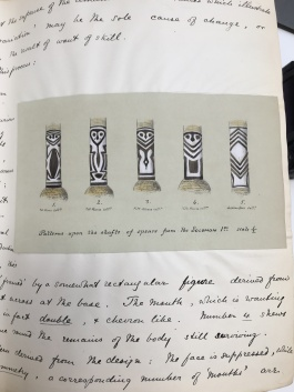 Henry Balfour, drawing of spears from the Solomon Islands, Pitt-Rivers Museum